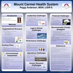 Mount Carmel Health System by Peggy Anderson