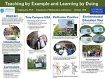 Teaching by Example and Learning by Doing by Tingting Cai