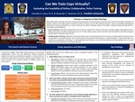 Can We Train Cops Virtually? Evaluating the Feasibility of Online, Collaborative, Police Training
